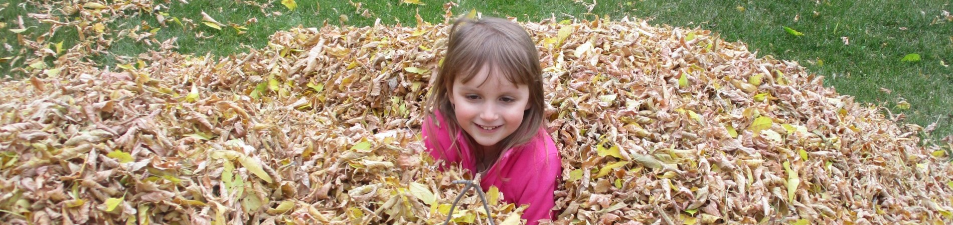 Little girl in pile of fall leaves