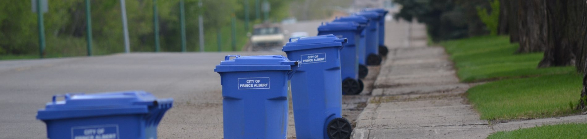 Recycling bins placed for collection